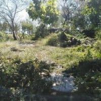 台風19号が残した被害