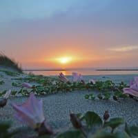 5月25日の夕陽