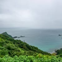 横浪半島【高知県須崎市】