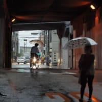 雨の日なりに撮ってますRIKENON 50mm/f2(L)