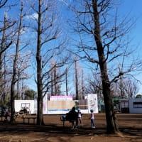 羽根木公園 2