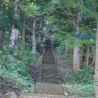 神社の階段でトレーニング 春?の花6