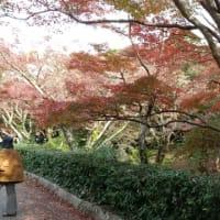 紅葉の毛利庭園を訪ねて。。。ランチ会