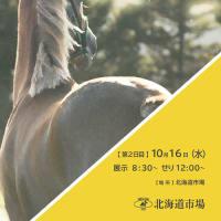 【オータムセール2019(Autumn Sale、1歳馬)】は本日15日(火)より2日間開催!(ライブ中継あり)