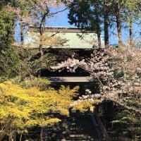 鎌倉へお散歩