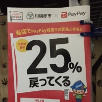 PayPay&au PAYがお得!