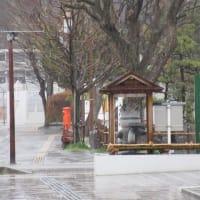 日曜朝のなかいちは雨でした。