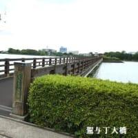 駕与丁公園のバラ園(福岡県・粕屋町)