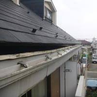 必殺雨漏り修理人の雨漏り調査報告書/ 天井にできた大きな雨染みの原因は、...... 。