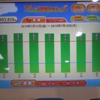 歩数計と市の健康プログラム