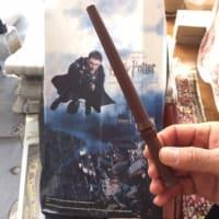 ハリーポッターの魔法の杖が我が家に