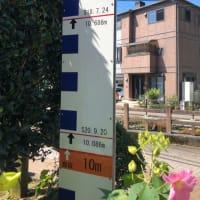 大洲市長浜町 昭和18年水害での浸水高