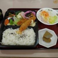 松山の朝食と整体的ウォーキング