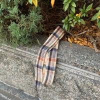 日乗 diary- 落としモノ 番外編:ベルト a belt for a cloak(?)