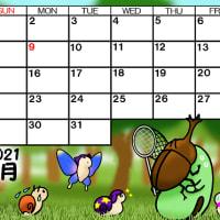 そら豆ゴースト2021年8月カレンダー