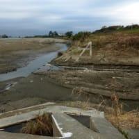 近くで見るほど荒れている…多摩川水害から一か月(5)