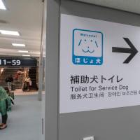 成田空港 日帰り出張