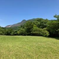 箱根で森林浴