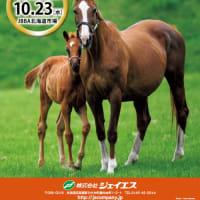 【ジェイエス・繁殖馬セール2019(秋季)】の「ブラックタイプ」が公開!(237頭)