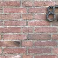 私たちのセリ札!買受人番号は「87番」!JSフードシステム