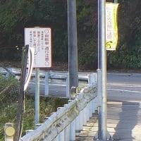 2019/11/18(月) 城ヶ平山 強風が吹き荒れる・・