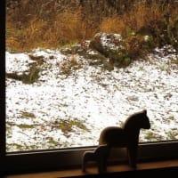 裏磐梯、花きりん!初冠雪!?薄っすらと雪積もりました!