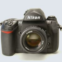 デジタルカメラ全盛時に存在感を高める現行・フィルムカメラ4製品