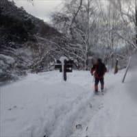 今季初 本格冬山登山? 武奈ヶ岳 3