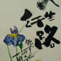 素人の写真とペン画≪202012≫