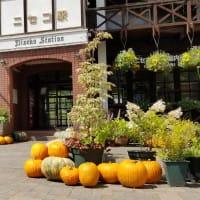 ニセコ駅はハロウィン・かぼちゃ♪