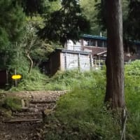 残念ながら萱場平で引き返した丹沢;塔ノ岳(2019年度28回目)