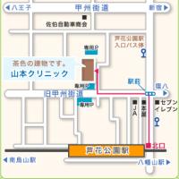 酒さ,の、最新のレーザー治療,で有名な,山本クリニック,世田谷,東京都にレーザー治療を御願い致します。熊本から週一回通院可能です。60回数(日)は可能です。