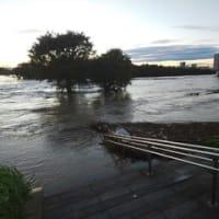 [575]台風後の江戸川