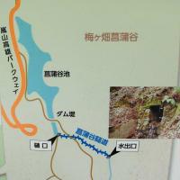 江戸時代の数学が開いた日本の近代化と角倉一族