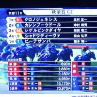 10/14 G1 秋華賞 やらなかったけどテレビで見た