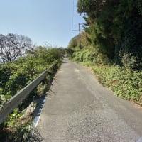 長崎は坂が多いと言われますが、坂というより山に囲まれているんですね。