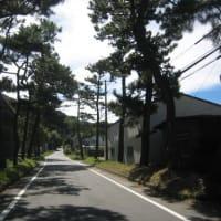 東海道・ユニークな案内板(下)