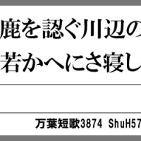 万葉短歌3874 射ゆ鹿を3607