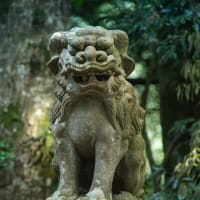 【Jun_07】色來神社の狛犬
