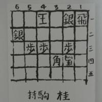 詰将棋第十六番 詰将棋パラダイス平成28年1月号・中級<解説>