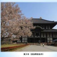 第13回日本禁煙学会学術総会で口演発表しました