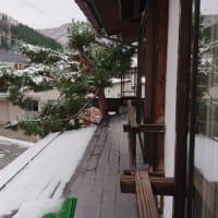 うっすらと雪に包まれました。