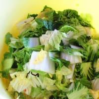 野沢菜と白菜を漬けました(^^♪
