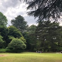 東京都庭園美術館のキスリング展