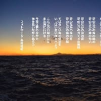 夢のなかの海