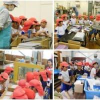 小学生が茶工場見学 《桜木小3年生》