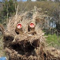 2020年3月15日 生物多様性のシンボル 龍神マルコ 開眼式