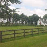 真夏の牧場訪問(その2)