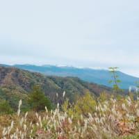 白くなった山