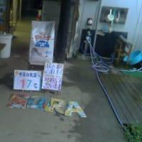 わんにゃん報告Blog -9/1~9/15